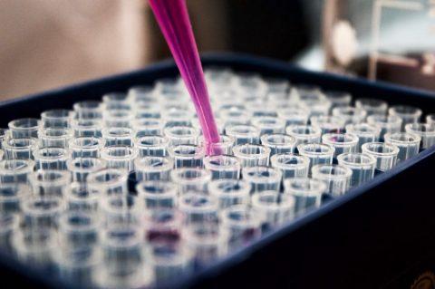 Business Development Biotechnology Industry United States